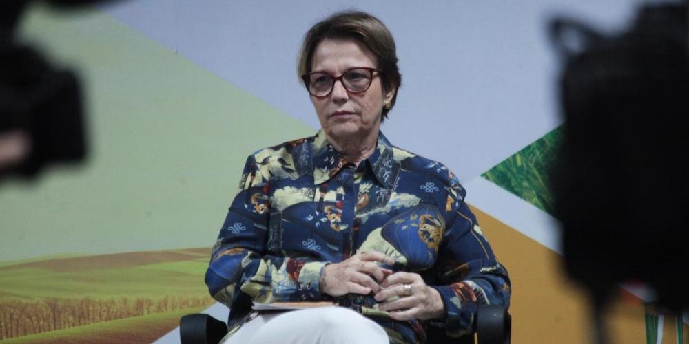 Antonio Araujo / Ministério da Agricultura / Divulgação / CP